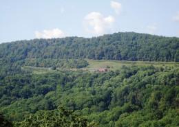 Altapass Ridge at the Orchard