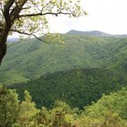 Cumberland Knob – Saddle Mountain Vista