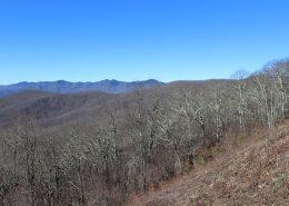 Dark Ridge