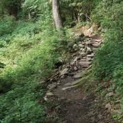 Johns River Gorge