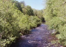 Linville River Bend