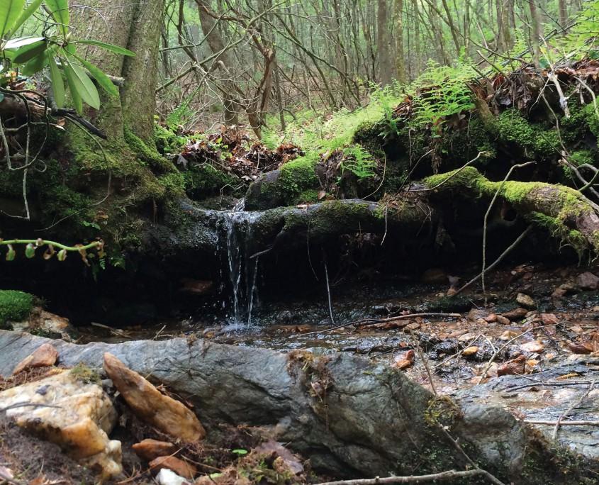 Little Glade Creek