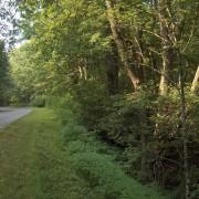 Big Crabtree Creek