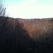 Mashie Stomp Creek