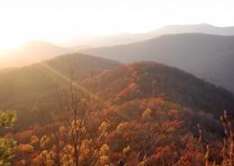 Montreat Wilderness