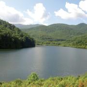 Waynesville Watershed